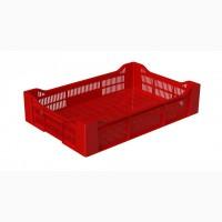 Производим/поставляем ящик пластмассовый ягодный 600х400х135 мм (швед)