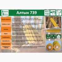Семена кукурузы Алтын-739