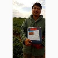 Продаем органическое удобрение Гумат калия, отечественного производства в любом объеме