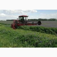 Семена кормовых трав:однолетних и многолетних