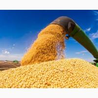 Соя без ГМО из Бразилии