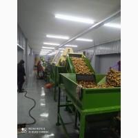 Линия мойки, очистки от кожуры, замачивания, переборки, фасовки, вакуумной упаковки овощей