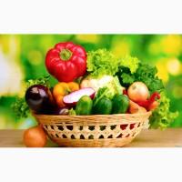 Реализуем семена овощных и бахчевых культур, газонных трав