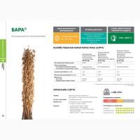 Семена сои: сорт БАРА селекции Компании Соевый комплекс (Россия)