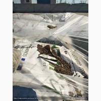 Продадим семена технической конопли
