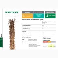Семена сои: сорт СЕЛЕКТА 302 селекции Компании Соевый комплекс (РОССИЯ)