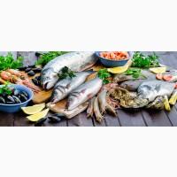 Рыба и морепродукты, прочее