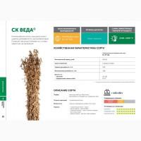 Семена сои: сорт СК ВЕДА селекции Компании СОКО (РОССИЯ)