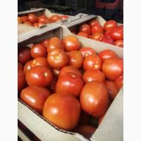 Продам томат сливка