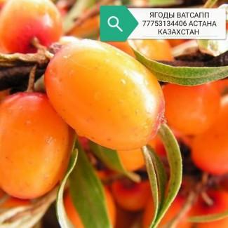 Казахстан Нур-Султан Астана ягоды овощи фрукты сухофрукты варенье доставка бесплатно ягода