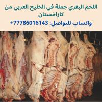 لحوم البقر و الضأن جملة من كازاخستان في البلاد العربية