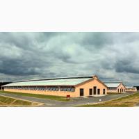 Проектирование строительство ферм крс козлятников под ключ с запуском оборудования
