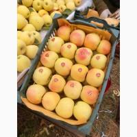 Продам яблоки оптом из Ирана
