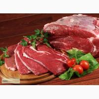 Куплю мясо оптом на производство