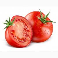 Продаём помидоры оптом из Турции