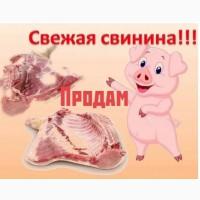 Продажа свинины Алматы/Алм.область 1100тг/кг