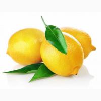 Продаём лимоны оптом из Турции
