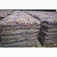 Картофель со склада хозяйства