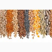 Зерно пшеница соя ячмень семена подсолнечника семечки
