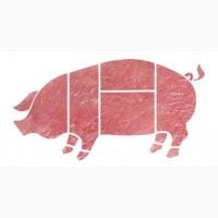 Оптом свинина в Китай