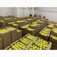 Яблоки из яблочного города алматы. Американка, Золотое превосходное