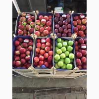 Любые польские яблоки, фрукты, овощи