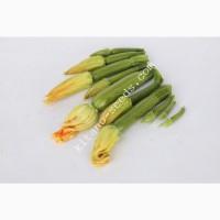 Семена кабачка KS 3714 F1