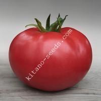 Семена розового индетерминантного томата КИБО F1