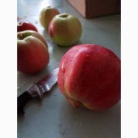 Яблоки не дорого