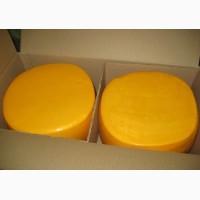 Сырный продукт оптом