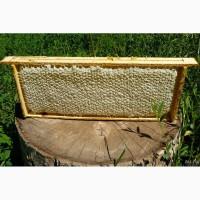 Продаем мед от производителя