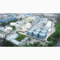 Закупка сои в крупный маслоперерабатывающий комбинат