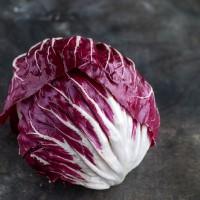 Продам салат Радичио экспортного качества оптом с плантаций Турции
